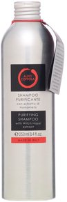 Aldo Coppola Purifying Shampoo